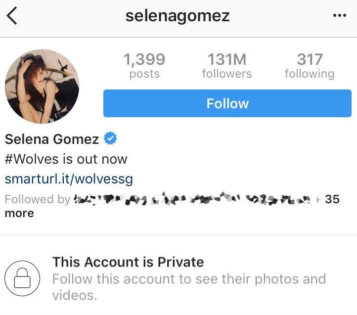 Selena Gomez Private Instagram