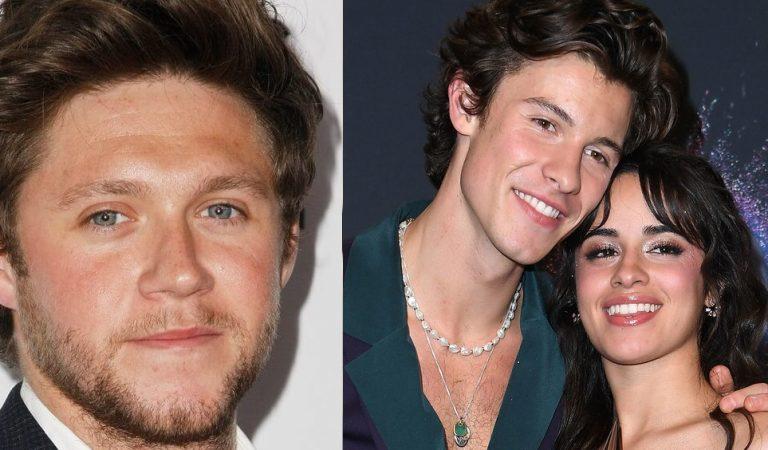 Niall Horan dice que Camila Cabello y Shawn Mendes son unos 'cabeza de popo'