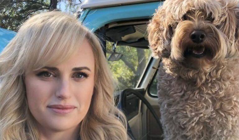 Rebel Wilson prefirió sufrir aparatoso accidente antes de lastimar a un perrito que se le atravesó mientras manejaba bicicleta