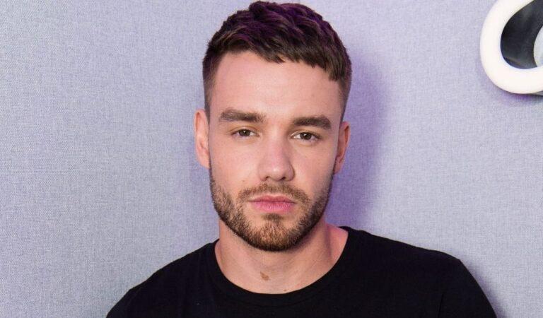 Liam Payne canaliza su trauma de One Direction haciendo TikToks